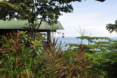 Humminbird Ocean view bungalow